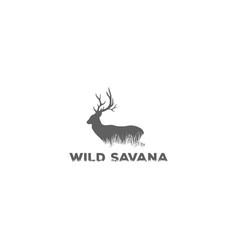 wild safari deer antler grassland savanna vector image