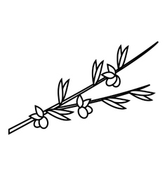 Olive branch icon outline style vector image vector image