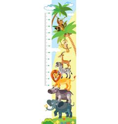 african animals height meter vector image