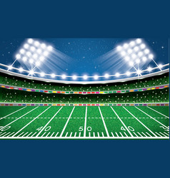 American football stadium arena vector