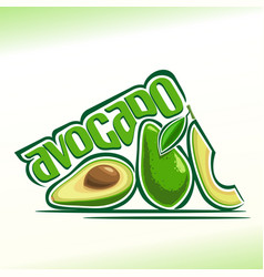 avocado fruits still life vector image
