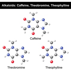 Caffeine Theobromine and Theophylline vector