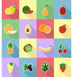 Fruits flat icons 18 vector