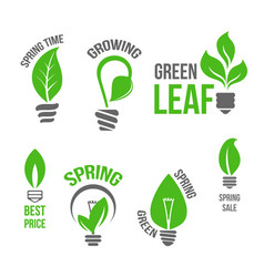 Isolated green light bulb spring leaf icion vector