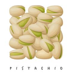 pistachio nuts square icon cartoon vector image
