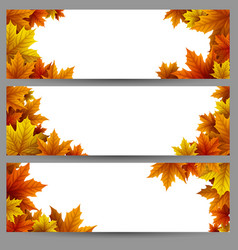 Set of autumn leaves banners vector