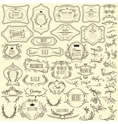 Collection of floral design elements and frames vector image vector image