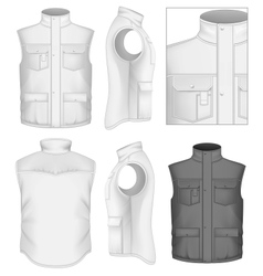 Mens bodywarmer design templates vector image vector image