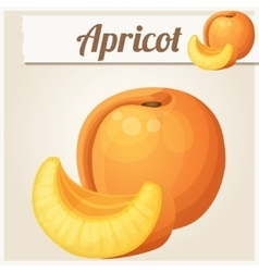 Apricot cartoon icon series food and vector