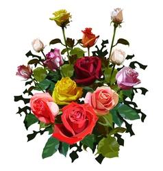 Big bouquet of roses vector