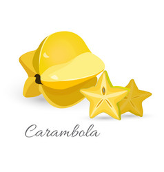 Carambola exotic fruit realistic vector