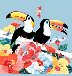 Graphics color funny birds toucans vector