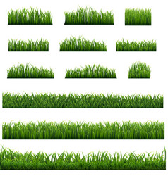 green grass frame isolated white background vector image