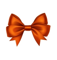 Orange Satin Gift Bow Isolated White vector