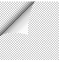 realistic curled corner and shadow on transparent vector image
