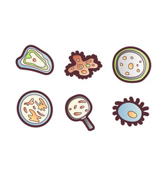 scientic research cartoon icon molecules vector image