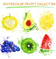 Watercolor fruit set vector image