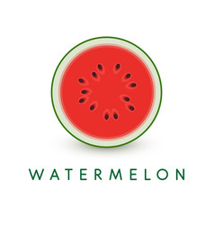 watermelon icon summer healthy food vector image