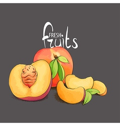 Juicy and fragrant peach vector image vector image