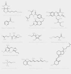 Skeletal vitamin formula vector image