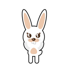 kawaii rabbit animal toy vector image