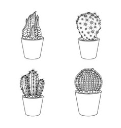 cactus and pot icon vector image