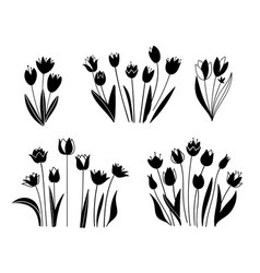floral set sketches flowers plants leaves vector image