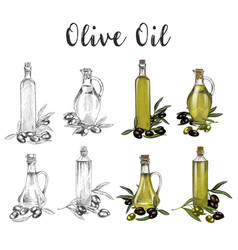glassware bottles with olive oil sketches vector image