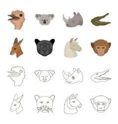 kangaroos llama monkey panther realistic vector image