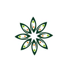 leaf flower wellness vector image