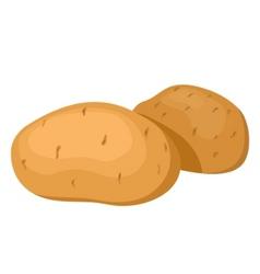Potatoes vector