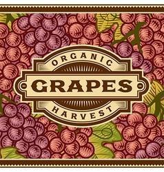 Retro grapes harvest label vector