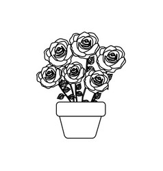 silhouette roses in pot with stem and leaves vector image
