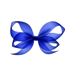 Blue Bow Top View Close up Isolated on Background vector