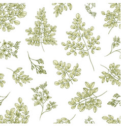 Botanical seamless pattern with miracle tree or vector