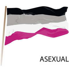 Word asexual banner an asexual flag vector