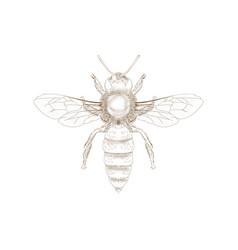 hand drawn bee vector image