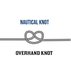 overhand knot on white background vector image