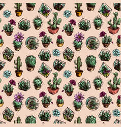 seamless pattern with succulents and cactus vector image vector image