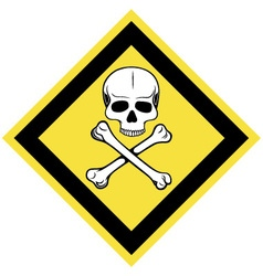 Skull and crossbones symbol vector image vector image