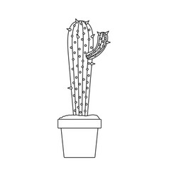 monochrome silhouette with cactus with small vector image vector image