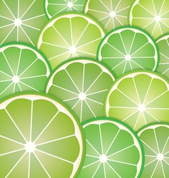 Pattern limes slices vector image