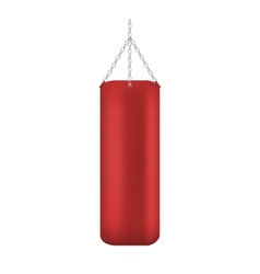 Punching bag isolated vector