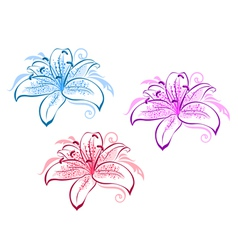 lily flower set vector image vector image