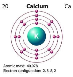Diagram representation of the element clacium vector image vector image