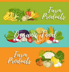 Organic vegetable farming flyers set vector