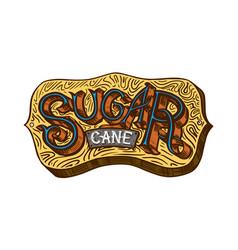 cane sugar wooden signboard inscription sugarcane vector image