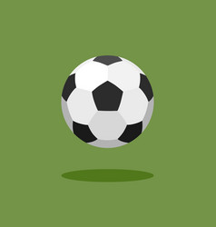 classic soccer ball on green background vector image