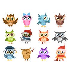 cute owls colorful friendly owl birthday kids vector image