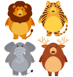 four different wild animals with happy face vector image vector image